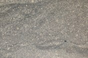 Mint Gray granite Tiles