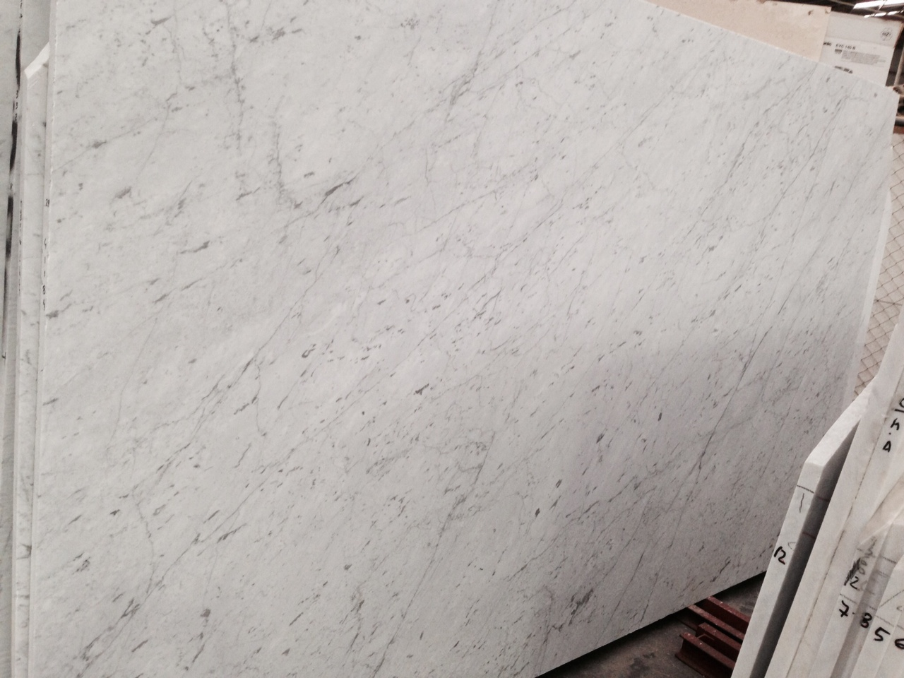 Bianco Carrara Marble : Marble slabs sydney tiles supplier