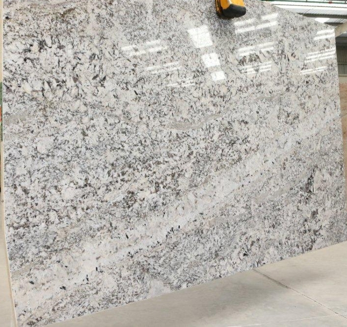 Splendor White Granite Slabs